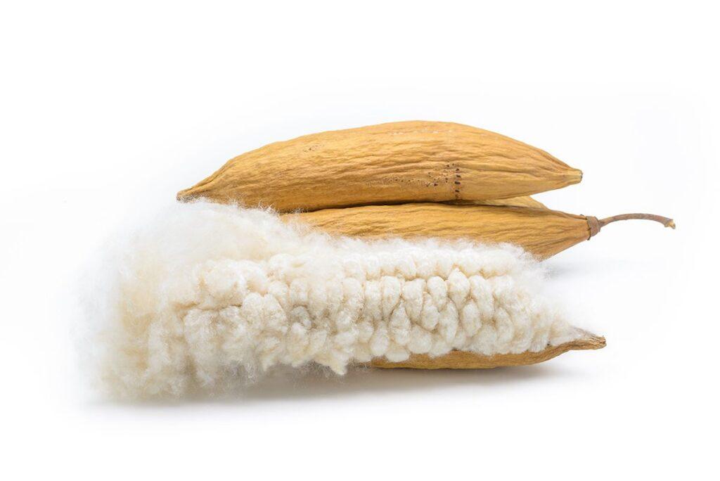 natural kapok fiber