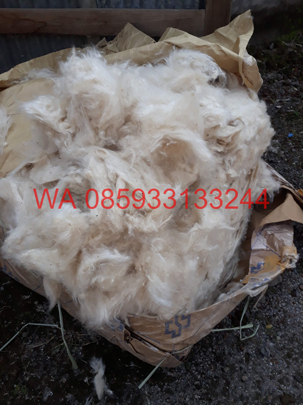 Kapok Fiber Suppliers